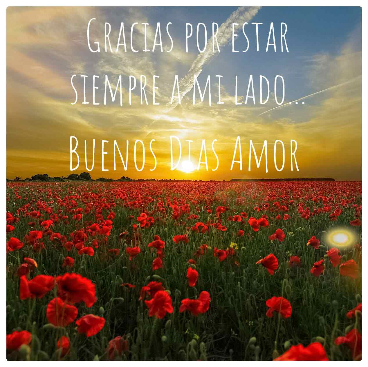 Imágenes-Buenos-Días-de-Amor-para-mi-Novia_05