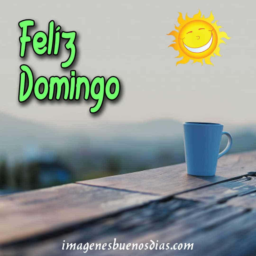Imagenes Feliz Domingo 15 Frases De Feliz Domingo